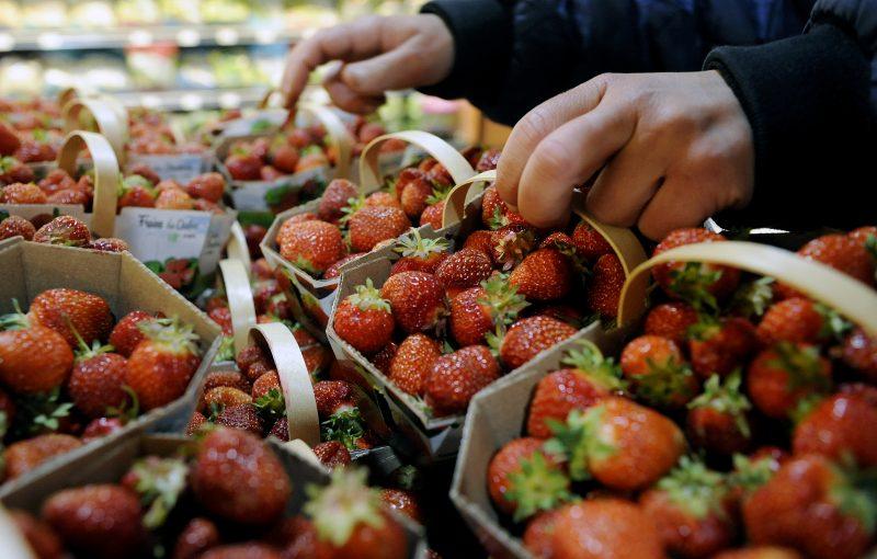 La saison des fraises a débuté le 30 mai dernier dans la région. | Photo TC Média - Archives