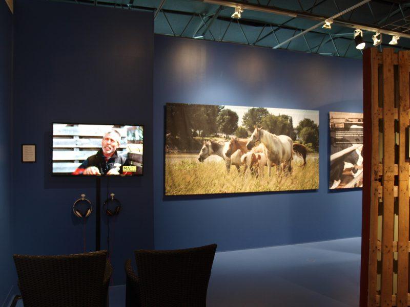 Vue sur l'exposition.   TC Média Nouvelles - Louise Grégoire-Racicot