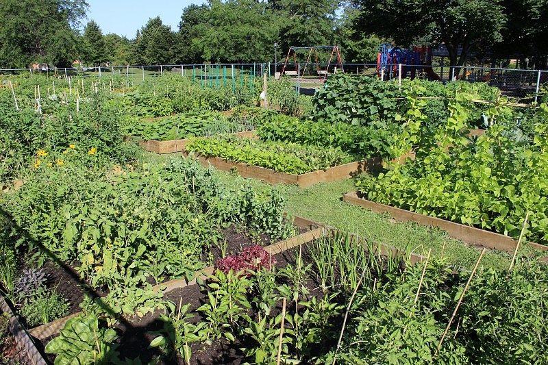 La Ville de Contrecœur cherche à implanter un jardin communautaire. | Gracieuseté