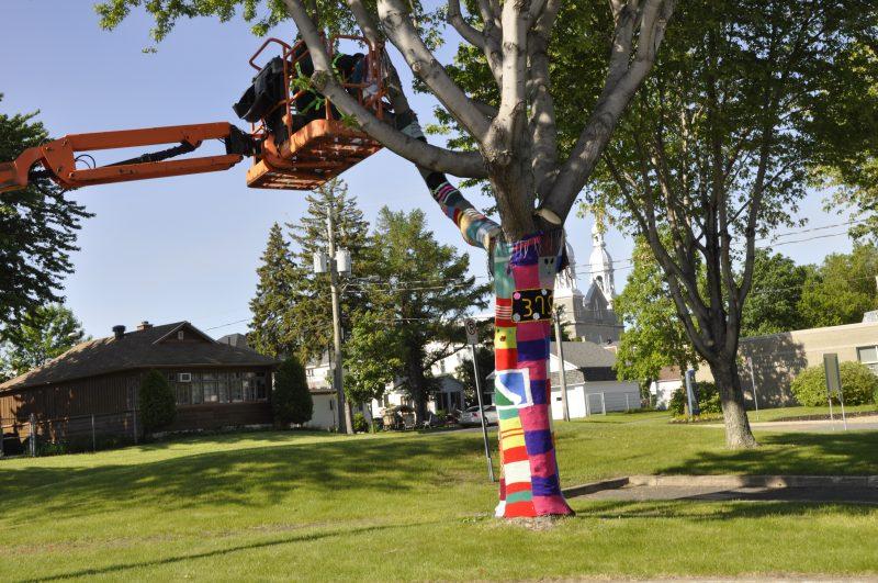 Un arbre est recouvert de tricot au parc Regard-sur-le-Fleuve. | Ville de Sorel-Tracy
