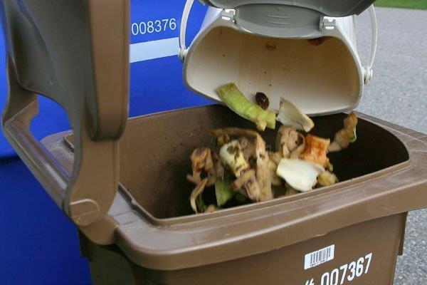 La collecte des matières organiques permettra leur compostage. | Photo - gracieuseté