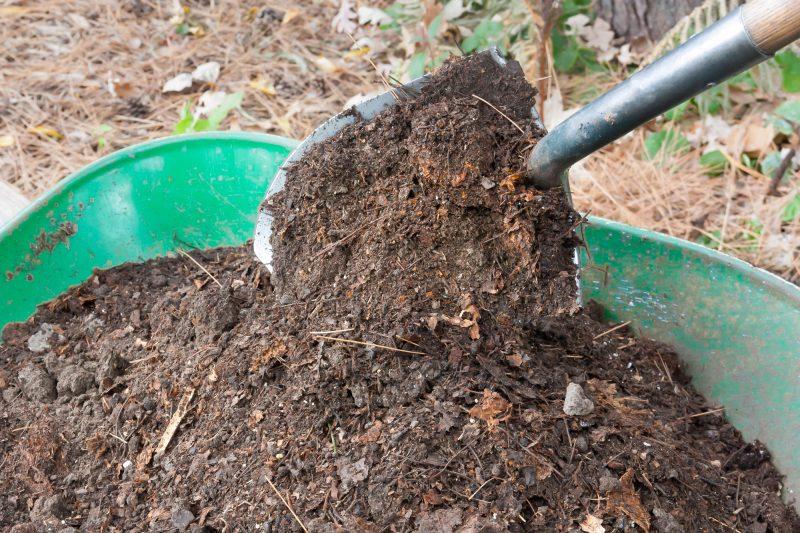 Onze municipalités de la MRC de Pierre-De Saurel distribueront du compost gratuitement à leurs citoyens. | depositphotos.com