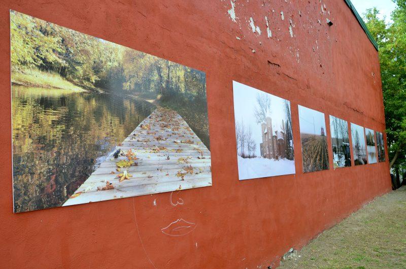 Le projet « Beauté et mystère des îles » est visible dans le centre-ville jusqu'en septembre. | Photo: TC Media - Julie Lambert