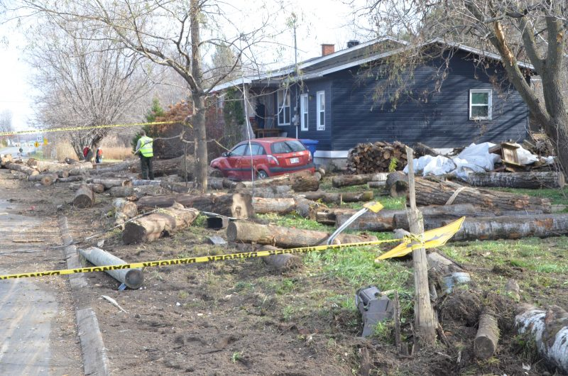 Le chargement de billots de bois s'est déversé sur le terrain de Mario Tousignant. | TC Média - Sarah-Eve Charland