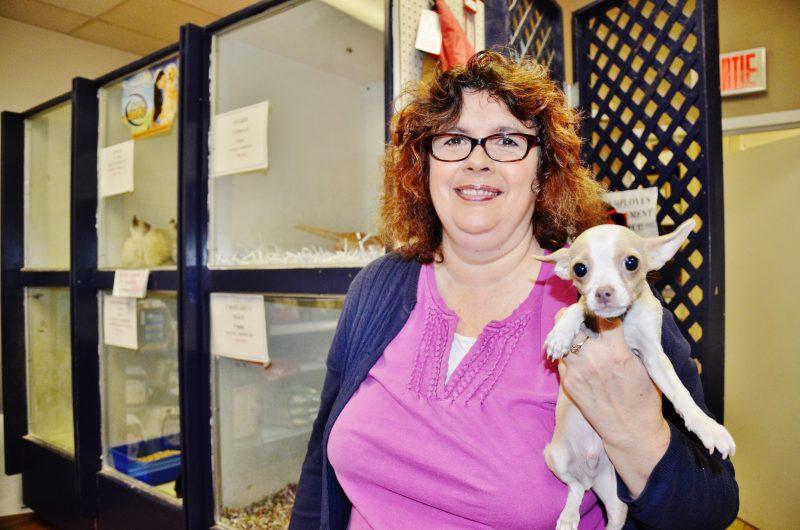 La propriétaire de l'animalerie Dalton, Line Blais, affirme que toutes les précautions sont prises concernant l'infection de Parvovirus dont a été victime son commerce en mars. | Photo: TC Média – Julie Lambert