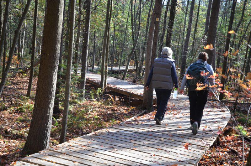 L'accès au parc est gratuit au public. | Photos par TC Média - Sarah-Eve Charland