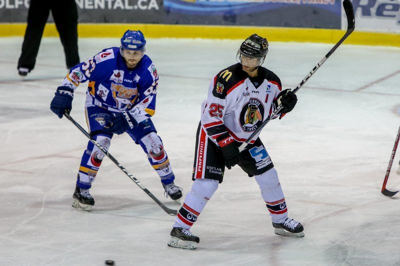 Le vétéran Stéphane Roy a pris sa retraite comme joueur de hockey le 20 juillet. | TC Média - Pascal Cournoyer