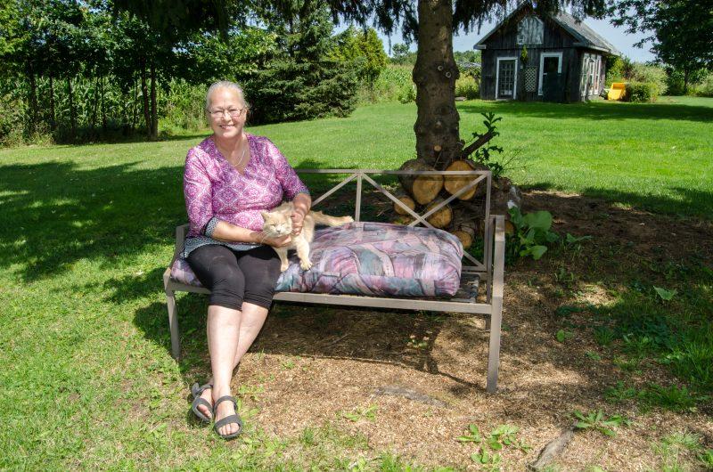 Danielle Levac recueille chaque année des dizaines de chats abandonnés sur son terrain. | TC Média – Stéphane Martin