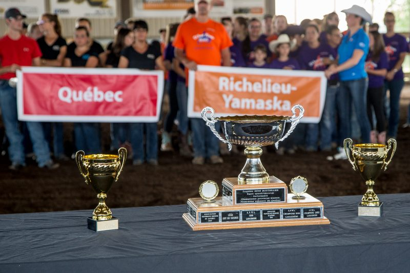 Sorel-Tracy accueillera des cavaliers de toutes les régions du Québec du 25 au 27 août et les 2-3 septembre. | Photo: TC Média - archives/Pascal Cournoyer