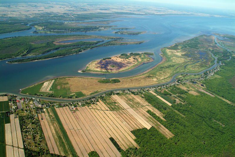 L'île du Moine est la première île que l'on voit le long de la route du Chenal-du-moine.   Photo: gracieuseté Conservation de la nature Canada/Claude Duchaîneé