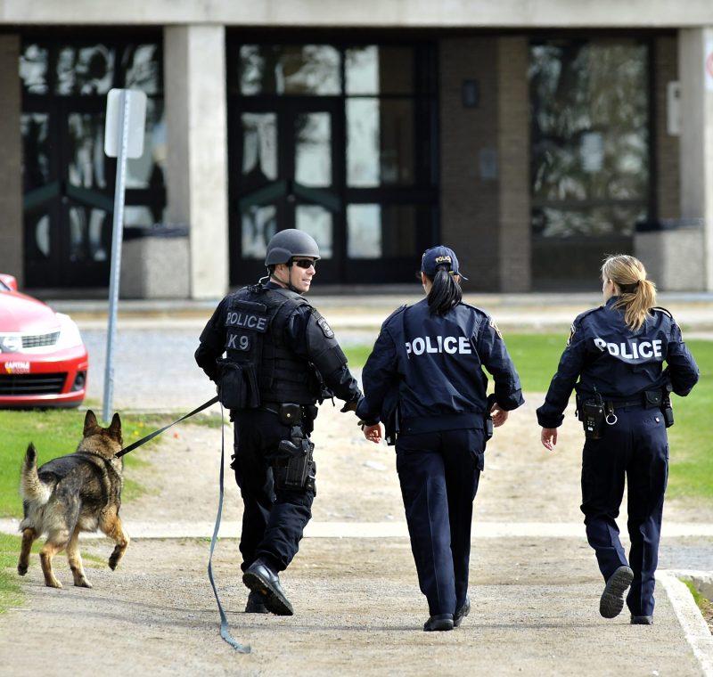 La Cégep de Sorel-Tracy a déposé une demande pour obtenir le programme Techniques policières. | TC Média - Achives