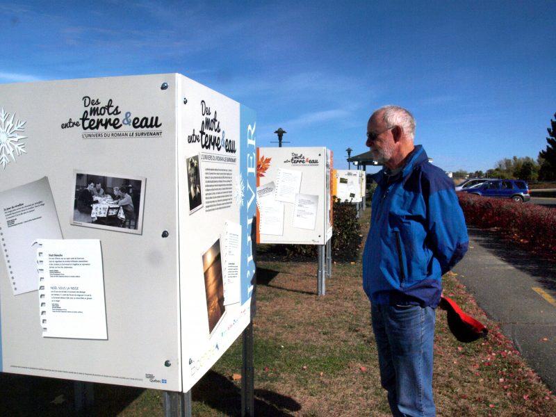 Quatre cubes sont alignés, près du kiosque du parc. | TC Média - Louise Grégoire-Racicot