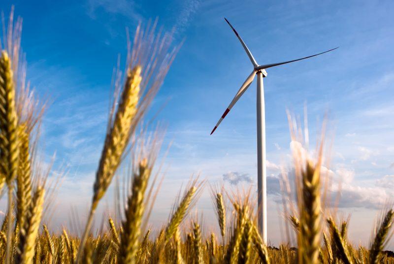 La députée de la CAQ, Chantal Soucy, remet en doute la rentabilité du projet du parc éolien de la MRC Pierre-De Saurel. | deposit photo