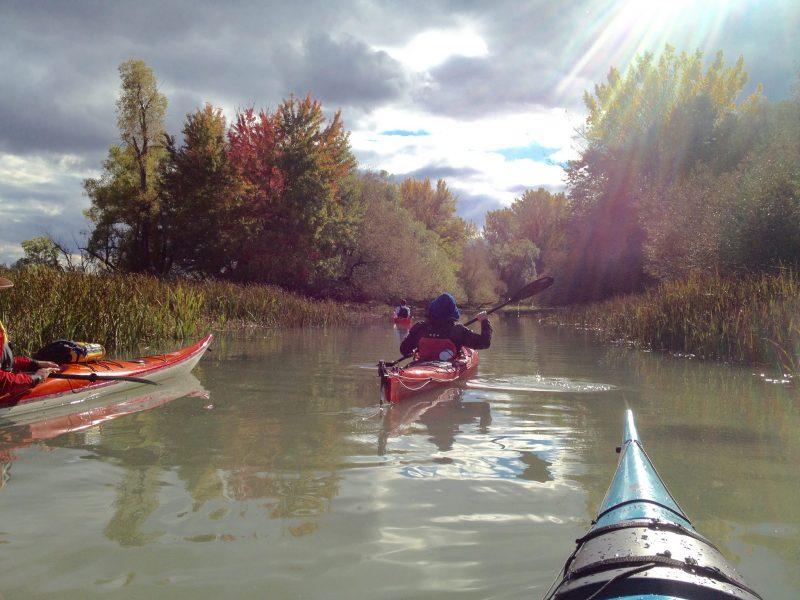 Les activités touristiques comme le kayak, le canot et les excursions sur l'eau ont la cote auprès des touristes. | Photo : gracieuseté – Office de tourisme de Sorel-Tracy/Marie-Claude Corbeil