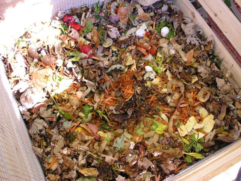 Les contribuables peuvent choisir de composter eux-mêmes leurs résidus organiques. | TC Média - Gracieuseté