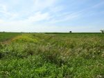 Un concours agricole de la MRC de Pierre-De Saurel couronne quatre gagnants