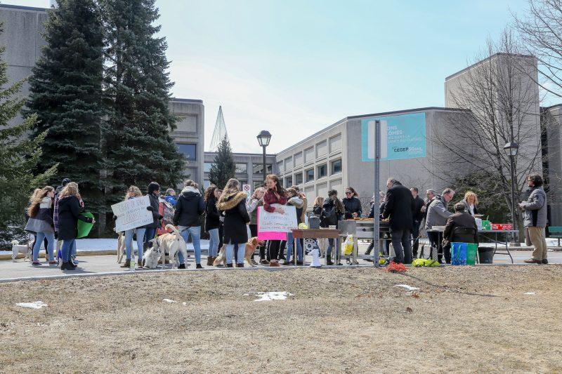 La manifestation s'est déroulée de façon pacifique, le 11 avril, entre midi et 13h devant le Cégep de Sorel-Tracy. (Photo: Pascal Cournoyer)