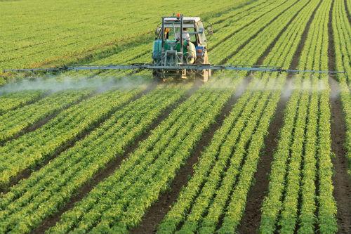L'utilisation du Roundup, connu pour contenir du glyphosate, est remise en question dans plusieurs pays.  Photo depositphotos.com