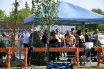 Distribution gratuite de compost et de plantes vivaces et potagères par la Ville de Sorel-Tracy