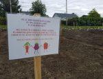 Un jardin éducatif pour les élèves de 4e année de l'École Maria-Goretti