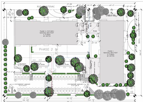 Les plans démontrent que plusieurs arbres seront conservés et que d'autres seront ajoutés.  Photo gracieuseté
