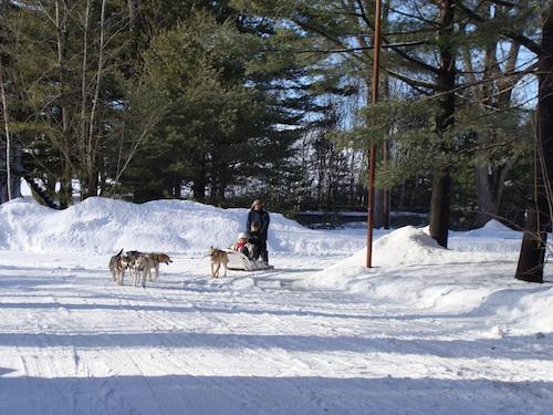 Des activités pour célébrer les Plaisirs d'hiver