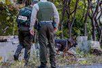 Le nombre de crimes contre la personne a atteint des sommets dans la région