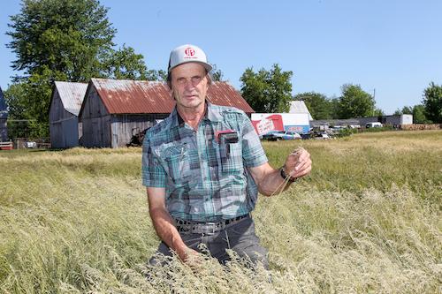 Gérald Brouillard estime que les producteurs de bovins sont les plus durement affectés.  Photo Pascal Cournoyer | Les 2 Rives ©